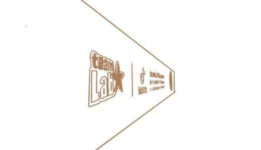 【サウナ】六本木 チームラボリコネクト アートとサウナ|アートの前ではととのわない